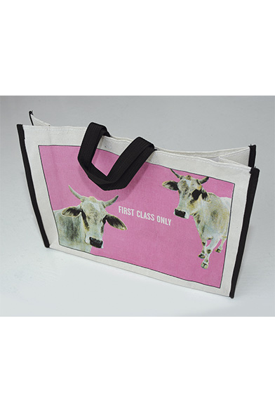 EXPO-pascal-colrat-bag-from-india-10