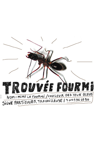 EXPOS-pascal-colrat-art-grandeur-nature-fourmi