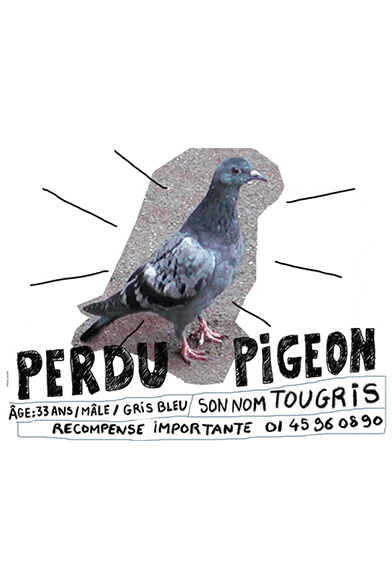 EXPOS-pascal-colrat-art-grandeur-nature-pigeon